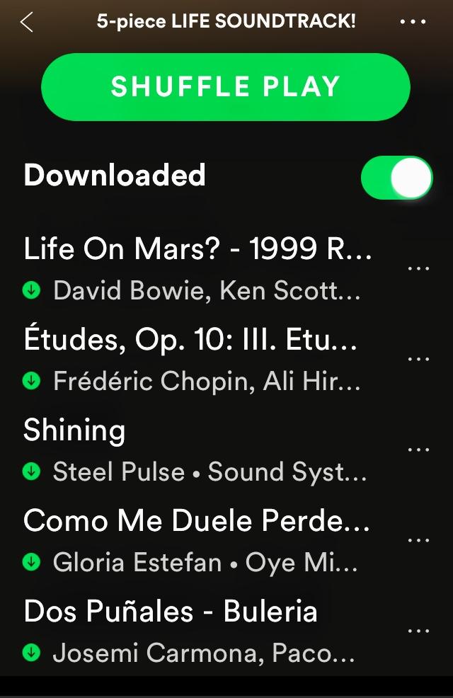 Spotify life soundtrack